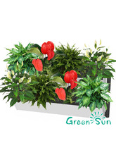 Wholesale Green Eco Friendly Vertical Garden Living hanging Wall Planter pots