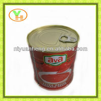 70G-4500G China tomato paste with easy open lid manufacturer