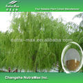 China Supply 100% White Willow Bark Extract10% - 98% Sallcin