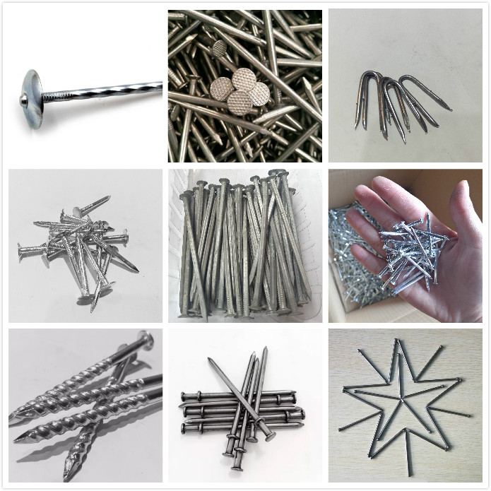 Stainless steel Nail/ twist shank common nail