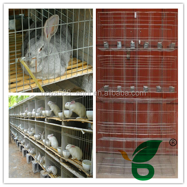 hot selling new design rabbit house