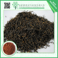 Manufacturer Sales Black Tea Extract 20% Polyphenol