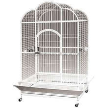Luxury Parrot Cage Bird Cage