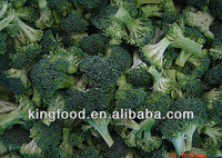 Export frozen fresh broccoli