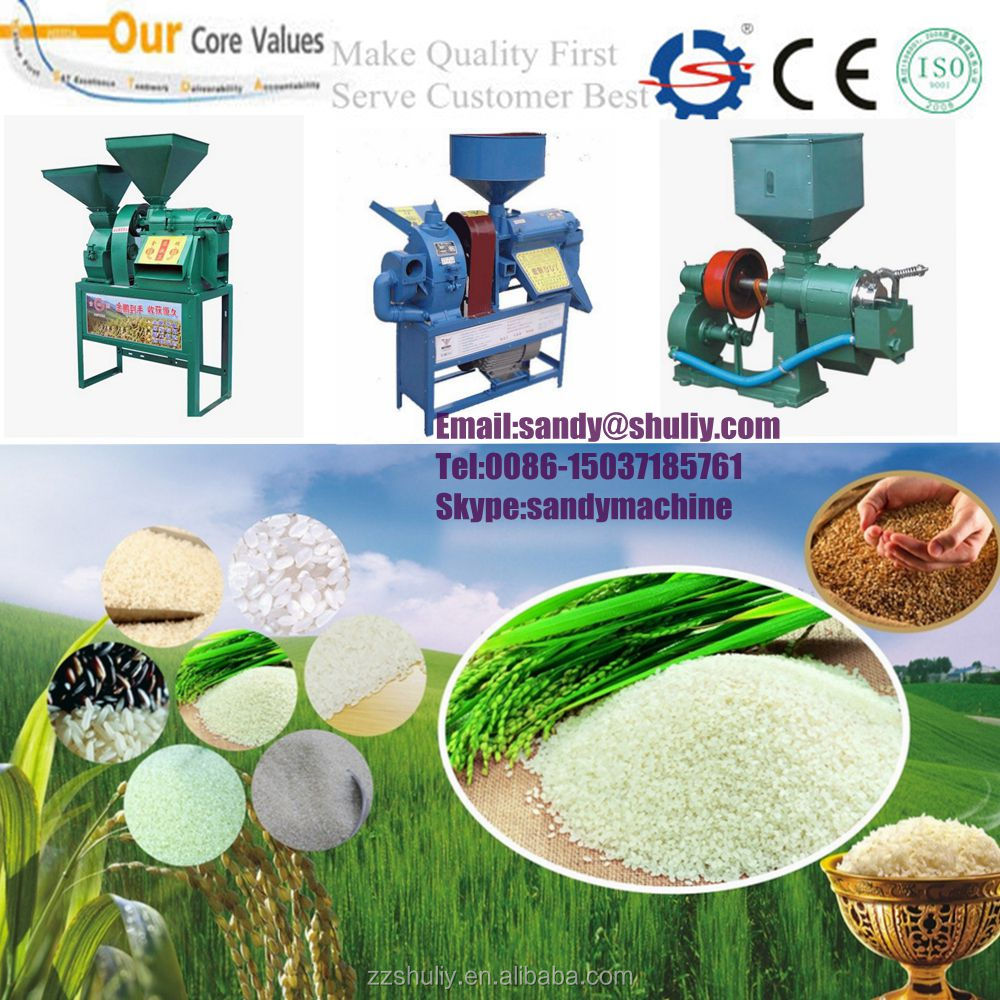Home use mini rice mill
