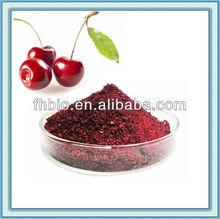 100% Natural Freeze Dried Cherry Powder