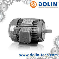 Low voltage 3 phase squirrel cage induction motor
