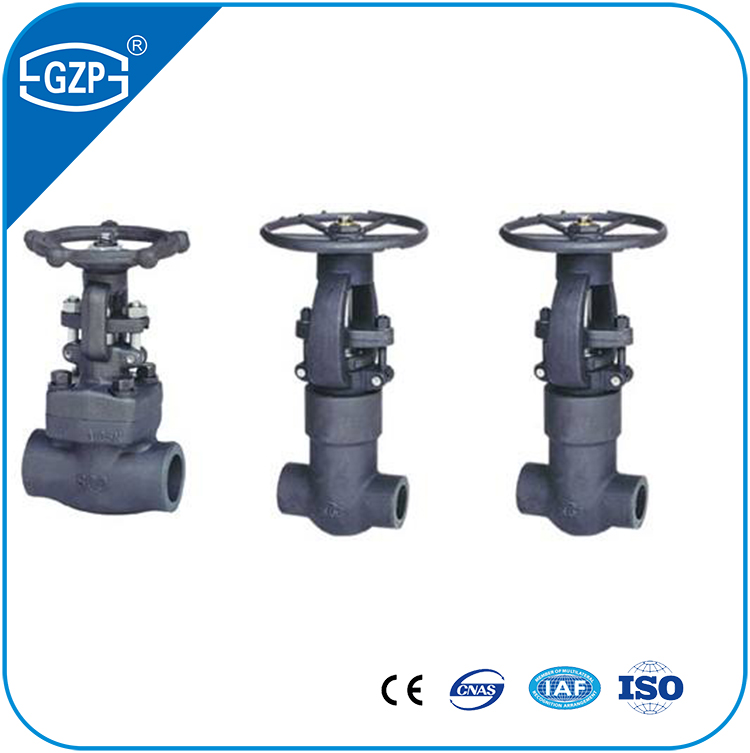 Steam API 600 602 Wedge Welding Gate Valve with High Mpa Pressure Gate Valve