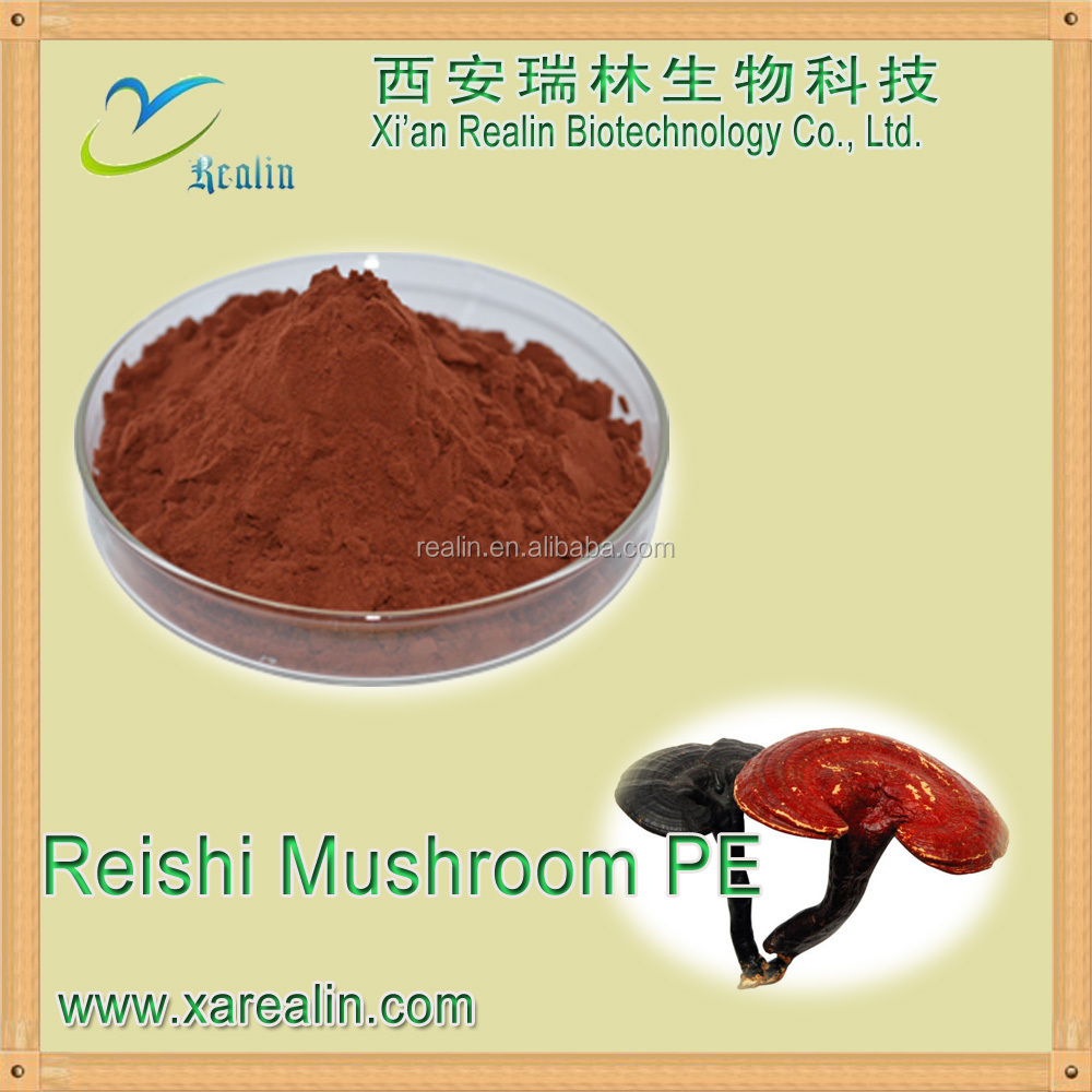 Factory Supply Natural Lucid Ganoderma extract Lucid Ganoderma P.E. ganoderma lucidum spore powder