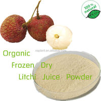 GMP Supply Freeze Dried Litchi Pulp Powder