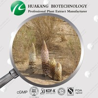 Competitive Price Cistanche deserticola Extract