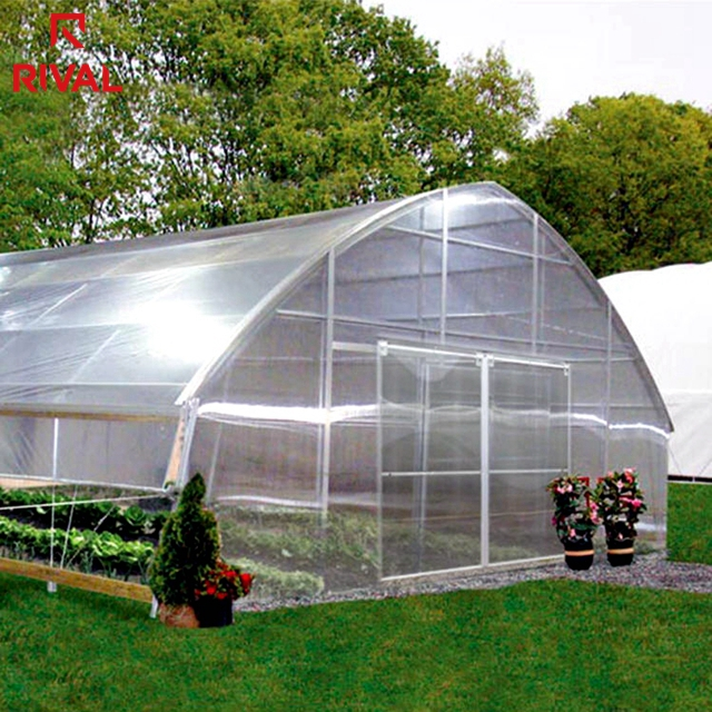 China Suppliers New Product Greenhouse Used Plastic Film Horticulture With UV IR Blocking