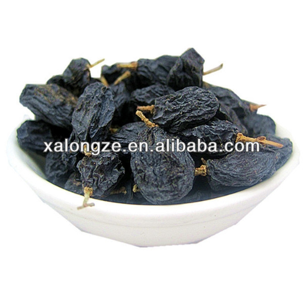 Organic Black Currant Extract