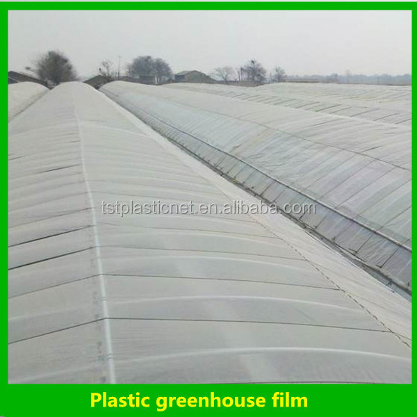 Effacer thermor tractable de protection plastique effet de serre film feuille de pvc rigide - Enlever film plastique de protection ...