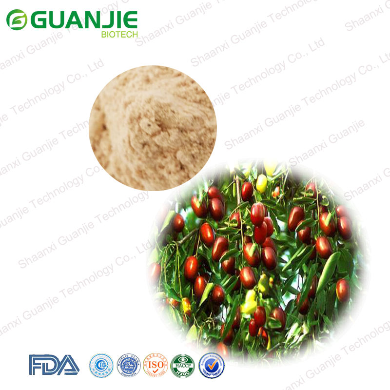 High Quality Nature Pure Red Jujube Juice Powder