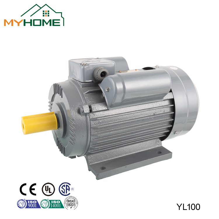 YL series single-phase dual-capacitor induction motor