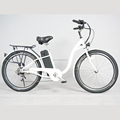 Cheap price electric bike 36V 10AH bike electric