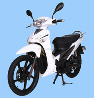 1000W/2000W EEC approved electric scooter/ electric bicycle/electric bike