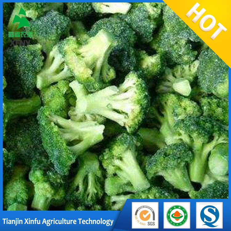 grade AAA fresh vegetables organic frozen broccoli