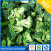 Grade AAA Fresh Vegetables Organic Frozen