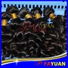 Fayuan hot selling 100% indian curly hair