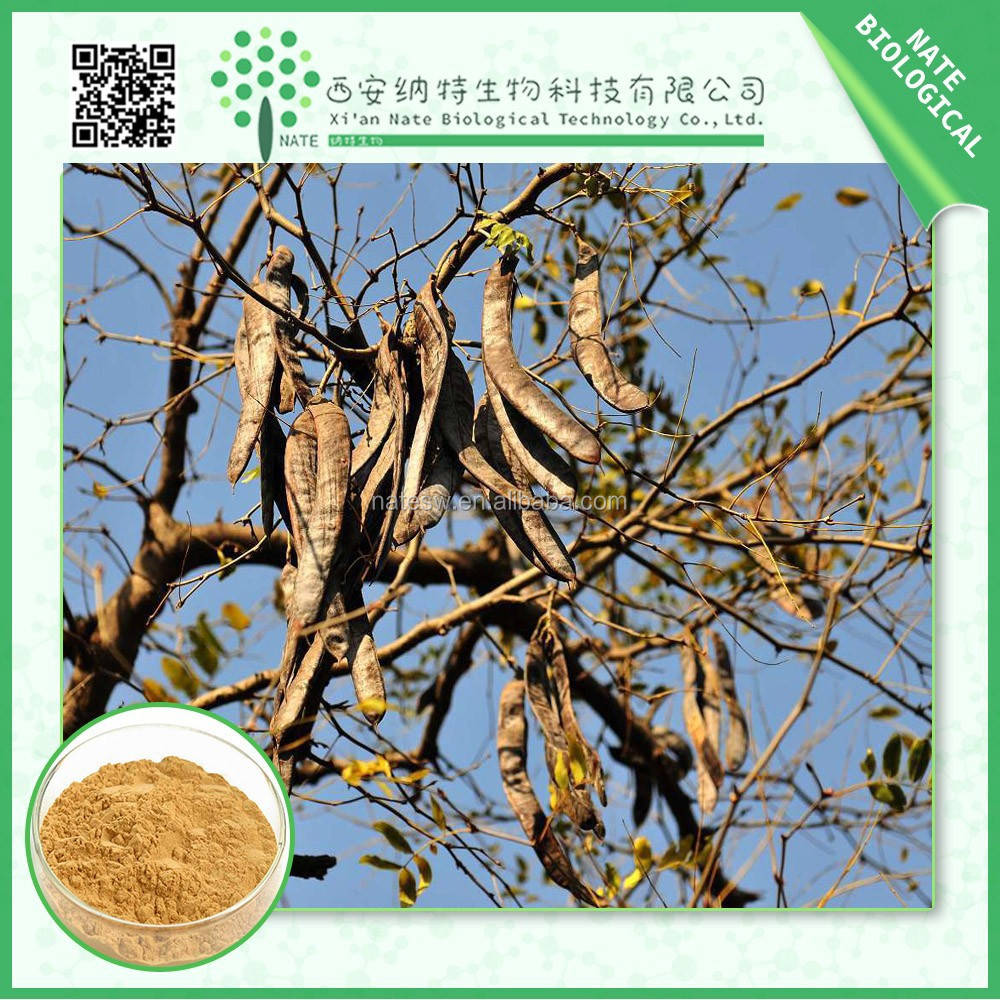 High quality Cassia Nomame lavones extract,Cassia nomame lavones 16% powder manufactures
