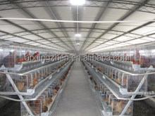 A type 3 tiers 90 birds chicken cage for sale /used chicken cages for sale/types of bird cage