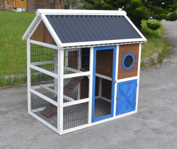 Lovely chicken coop with plastic roof