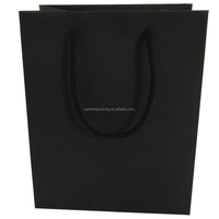Fancy Gift Paper Bag,Paper Bag with Cotton Handle,New Luxury Shopping Bag