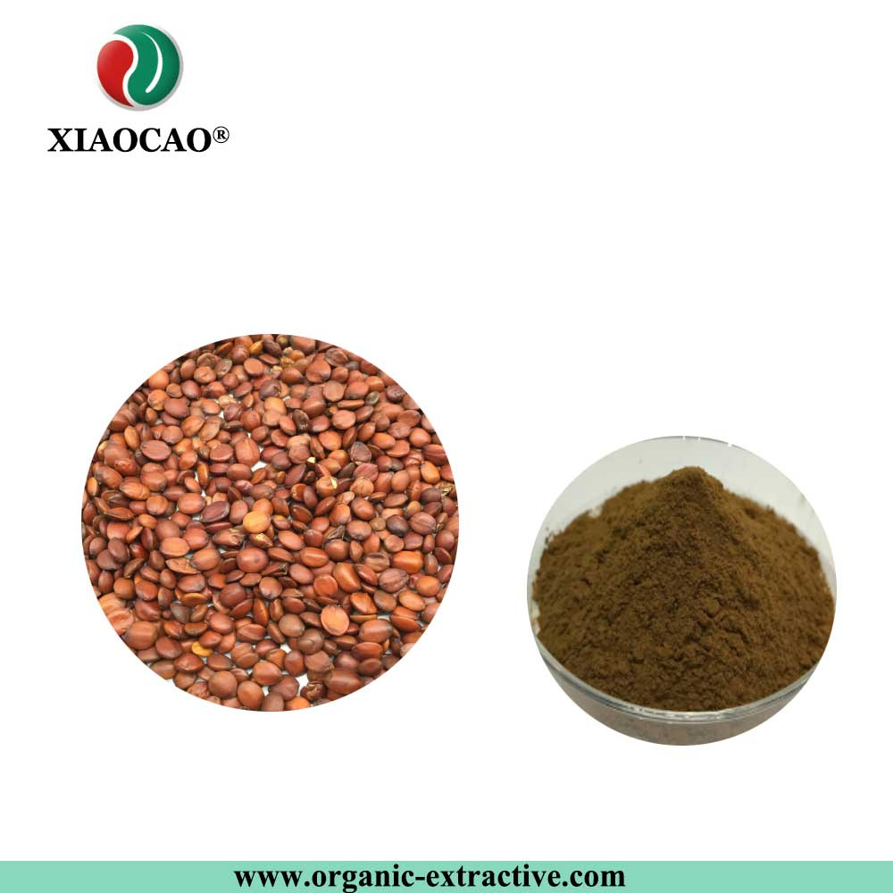 Natural Spine Date Seed P.E./Jujube Extract