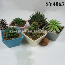 colorful square small decorative flower pots