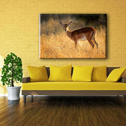 China manufacturer deer wild animal designs pictures for fabric painting