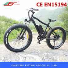 fork suspension fat tyre e-bike with 750W bafang rear motor