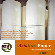 Top Quality Mother Jumbo Roll for Facial Tissue, Virgin Wood Pulp
