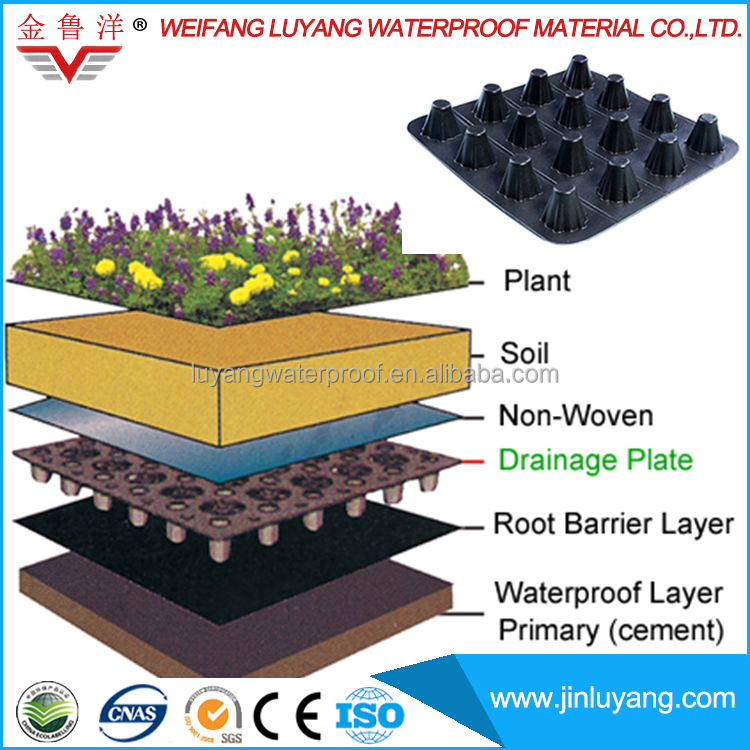 Roof Greening Cheap Price Dimple Drain Board from Manufacturer