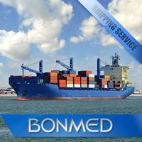 International sea shipping sea freight service in shenzhen China to lithuania------skype:bonmedellen