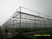 Polycarbonate Greenhouse panels for roofing
