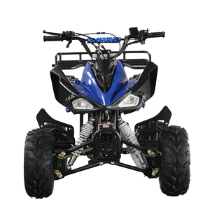 Top Quality Best 110Cc Quad Atv Racing Quad