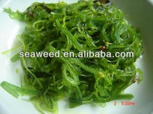 name of aquatic plants seaweed