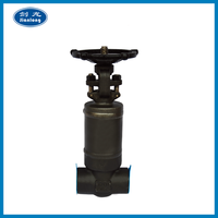 Wholesales CRXV-018 High Pressure Sw Bw Forged Gate Valve Ball Valve