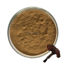 hot sale natural Lucid Ganoderma extract powder/Ganoderma Lucidum spores powder