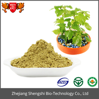 Wholesale Wild Mint Herb Extract, Peppermint Powder Extract