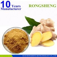 competitive price supply Gingerols liquid ginger extract