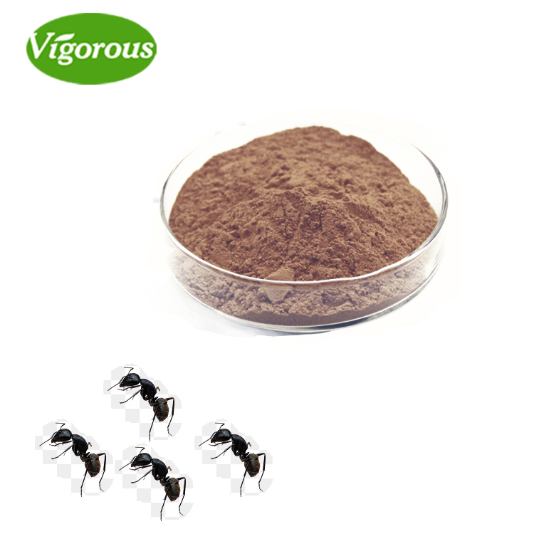 Sexual Enhancement 20:1 black ant extract powder pills