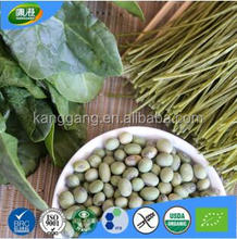 Private label organic edamame & spinach vegetable noodle
