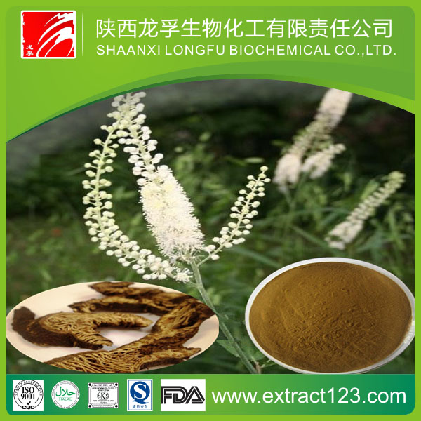 Free Sample Of Black Cohosh Extract BLC-Tritepene2.5% Packing With Drum/ Plastic Container