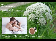 Enhancing Sexual Function Cnidium Monnier Extract 10:1, 10% Osthol