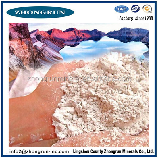 Best quality Diatomite feed additives manufacturer