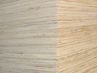 competitive 18mm plywood door price from china direct factory