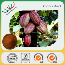 Natural high quality Cocoa bean extract powder